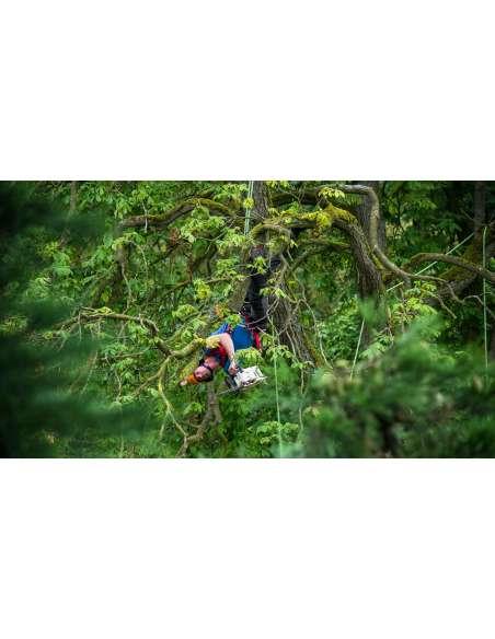 Arborismo y Poda de Altura