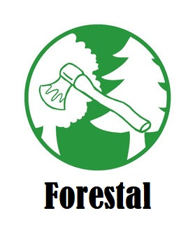 Ropa Especial Forestal